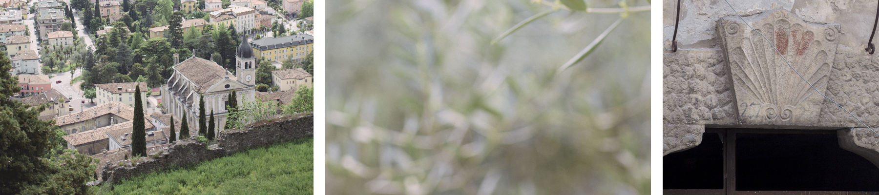 Sweetdragonfly – Il Blog di Arco dei Sogni
